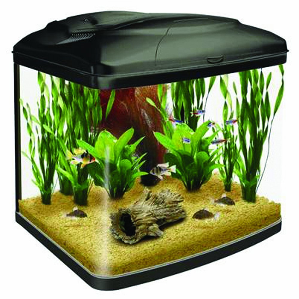 how to build a 30 gallon fish tank