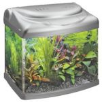 Panorama 40 Fish Tank