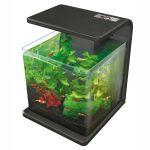 Wave 15 Fish Tank
