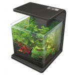 Wave 30 Fish Tank