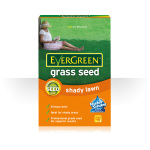 Evergreen - Shady & Dry Lawn Seed