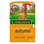 Evergreen Autumn 2 in 1 Refill