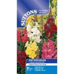 Antirrhinum Madame Butterfly Mix F1