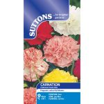 Carnation Chabaud Giant Mix