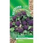 Broccoli Summer Purple Sprouting