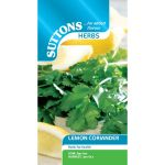 Lemon Coriander