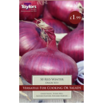 Onion Red Winter - 50 Pack