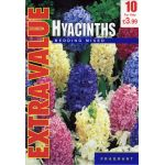Hyacinth Bedding Mixed - Extra Value