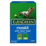 Evergreen Mosskill with Lawn Food