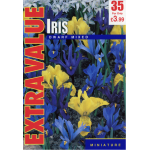 Iris Dwarf Mixed - Extra Value