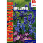 Blue Shades - Extra Value