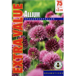 Allium Sphaerocephalon - Extra Value