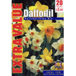 Daffodil Naturalising Mix - Extra Value