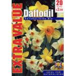 Daffodil Naturalising Mix - Extra Value