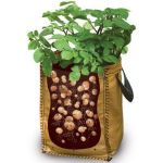 Potato Grow Bag Sack - Taylors Bulbs