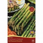Asparagus Connover's Colossal - Most Popular