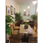 The Olive Tree Restaurant sofa!