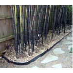 2mm Thick Bamboo Root Rhizome Barrier 60cm Deep