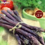 Asparagus Pacific Purple - Lignin Free (spears lacking stringiness)