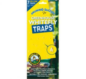Growing Success Greenhouse Whitefly Traps