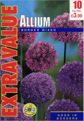 Allium Border Mixed - Extra Value