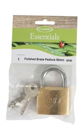 Polished Brass Padlock